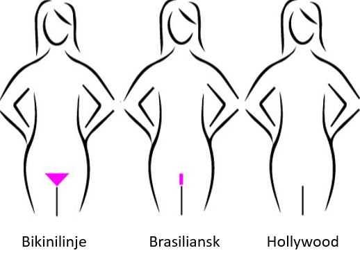 hvad er bikinilinje